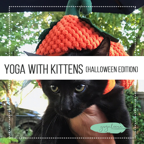 Yoga with Kittens